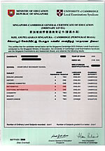 Maple's O-Level Certificate